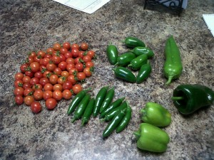 peppers and tomatoes
