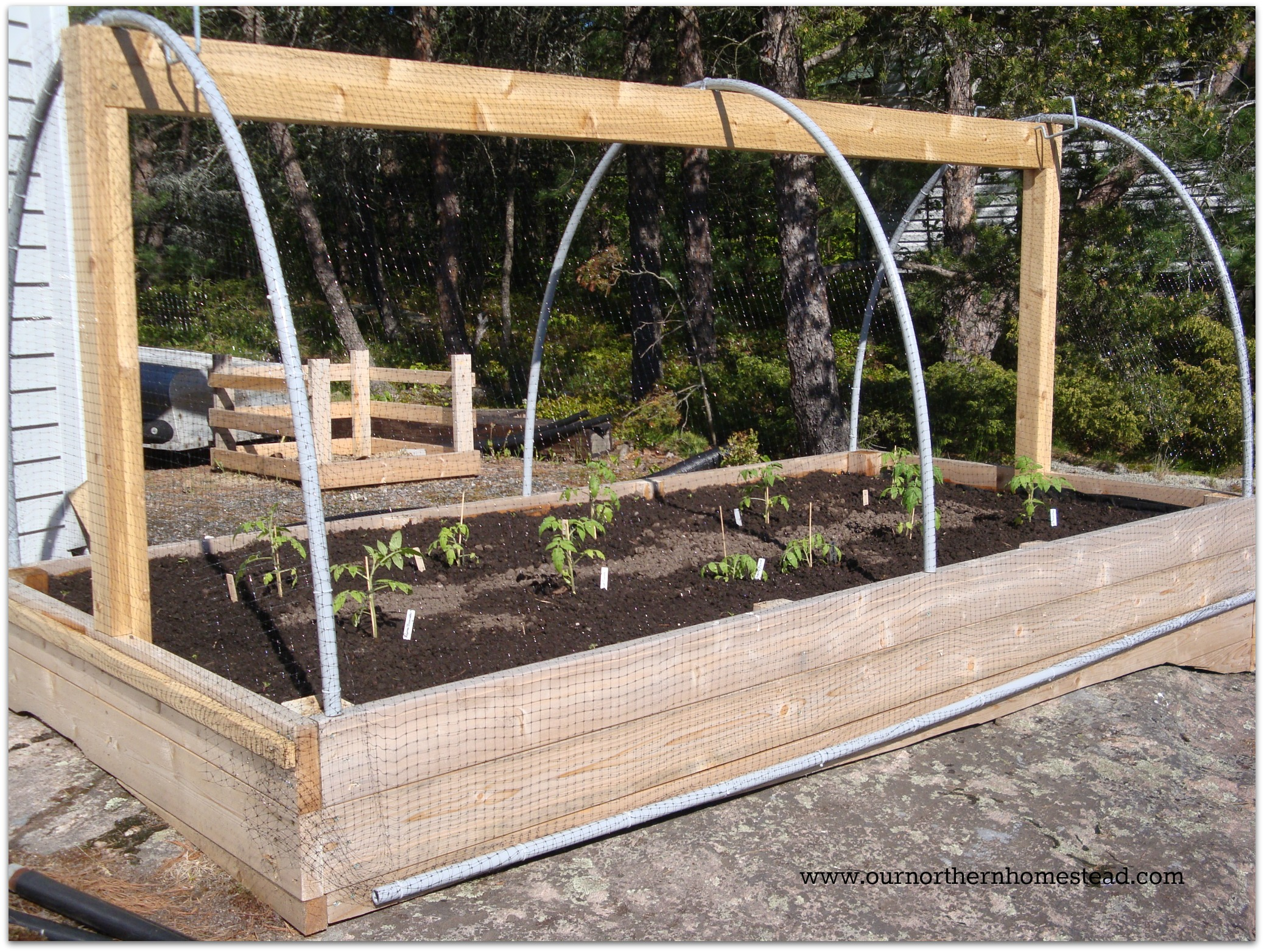 Our northern homestead - Deer proof vegetable garden ideas ...