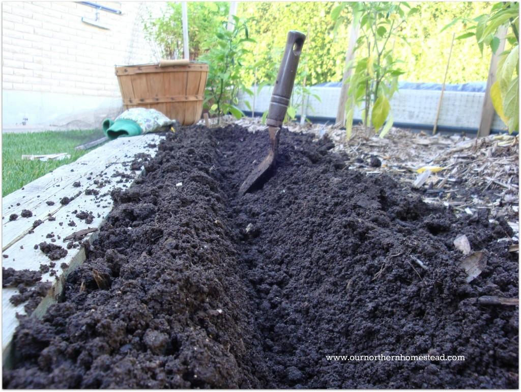 Dirt Furrow