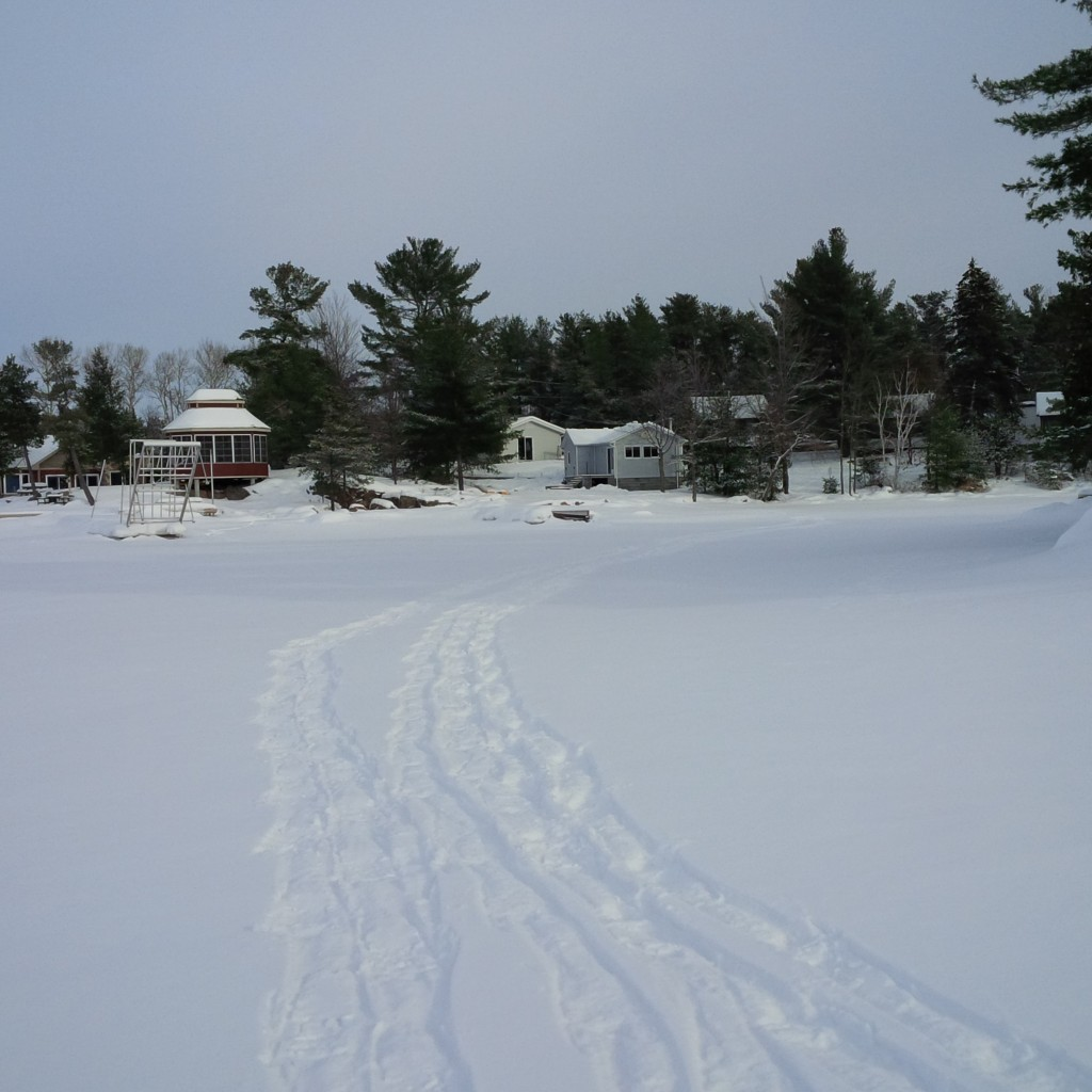 Cottage_Frozen Lake