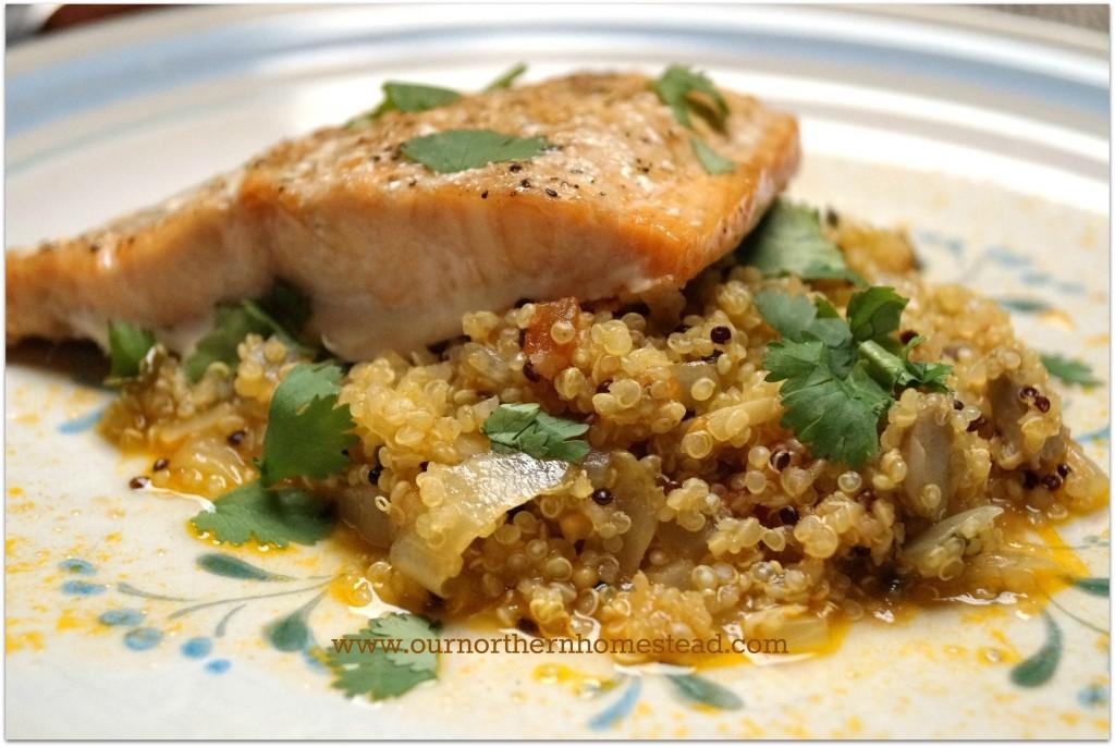 Madeira Quinoa_Blog