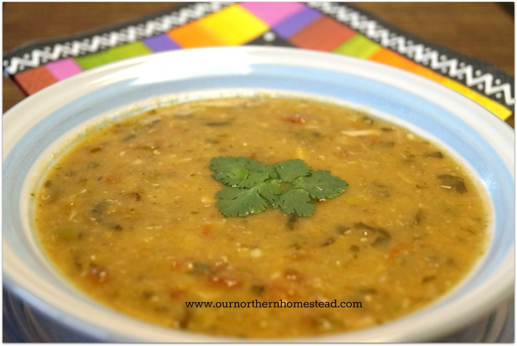 Mexican Spiced Lentil Soup