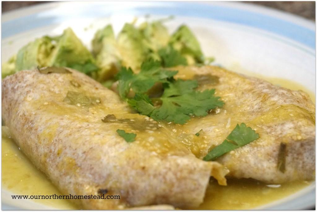 turkey enchilada_2
